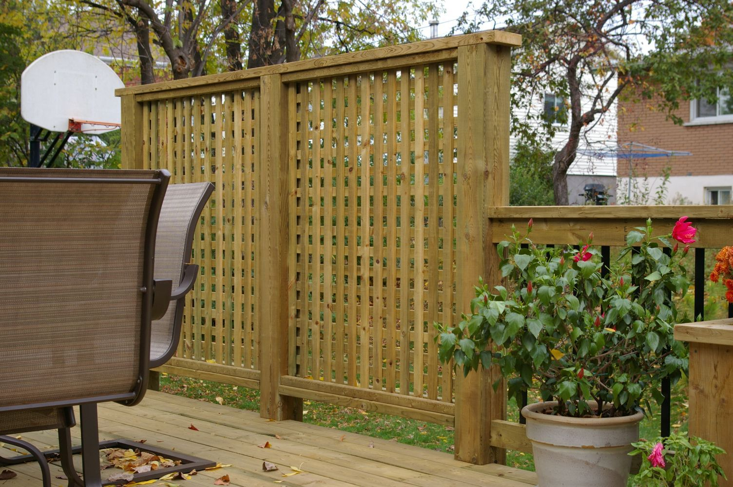 17 Creative Ideas For Privacy Screen In Your Yard Outdoor Privacy intended for size 1504 X 1000