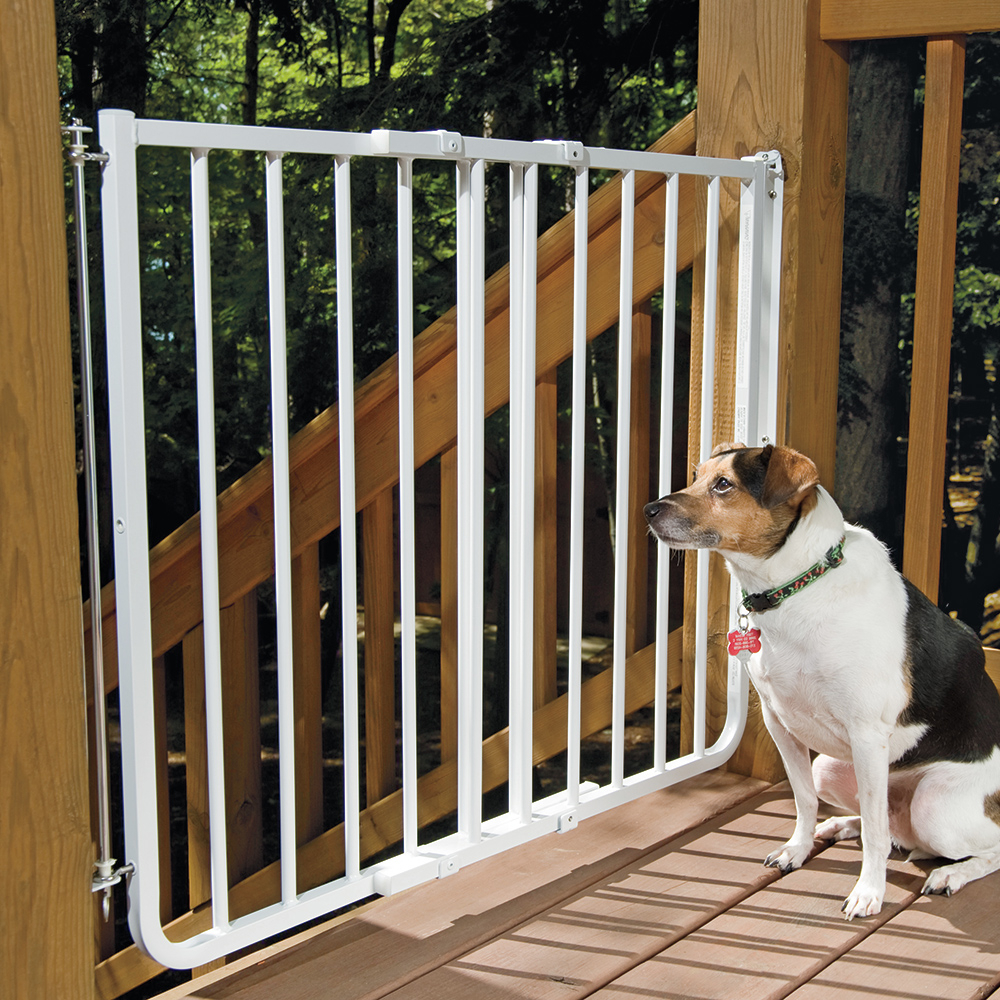 Merveilleux Pet Gates Stairway Special Outdoor Wall Mounting Gate At Drs Pertaining To  Dimensions 1000 X 1000