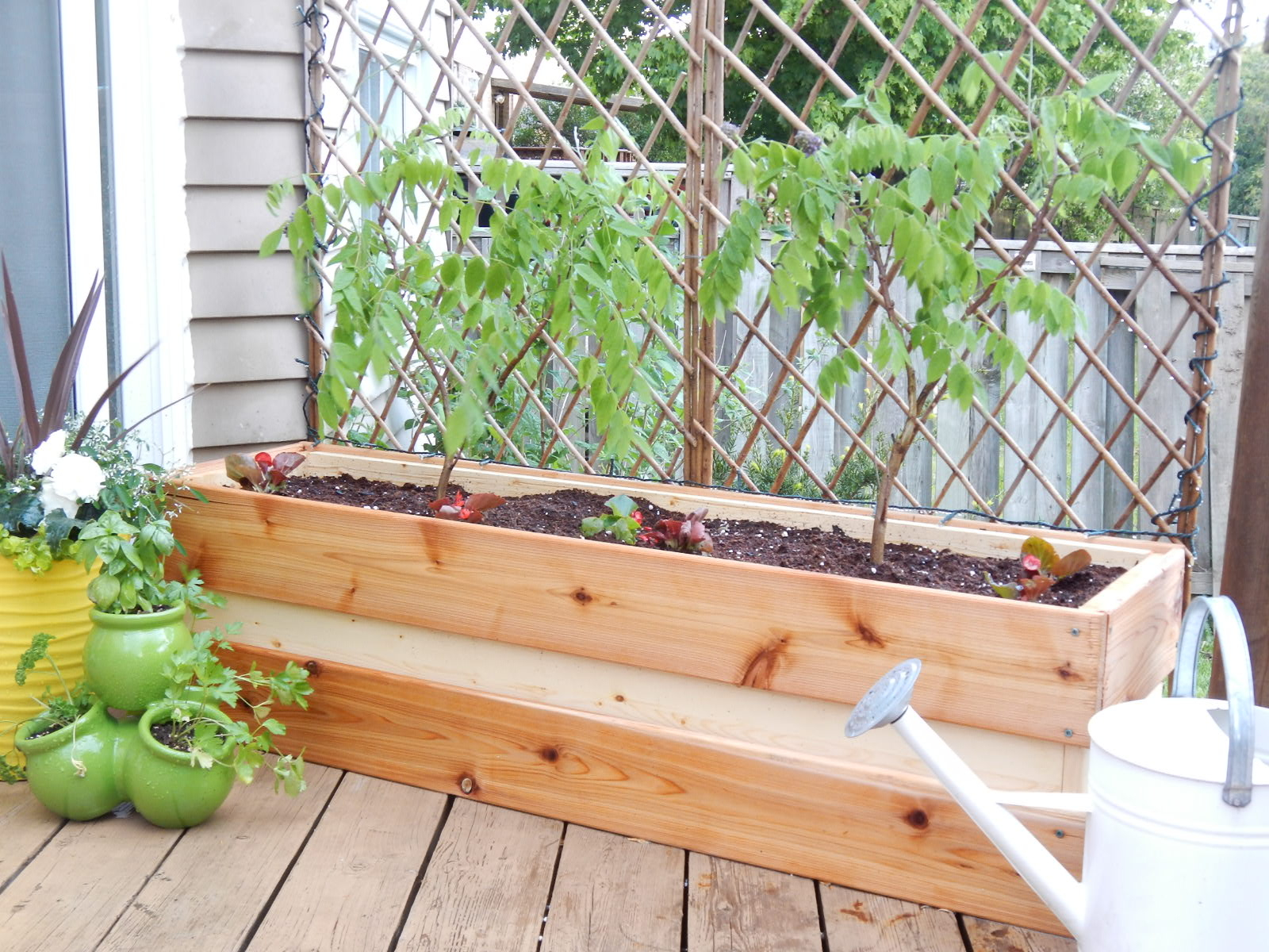 Planting For Privacy Diy Wood Planter Just Decorate Pertaining To Dimensions 1600 X 1200